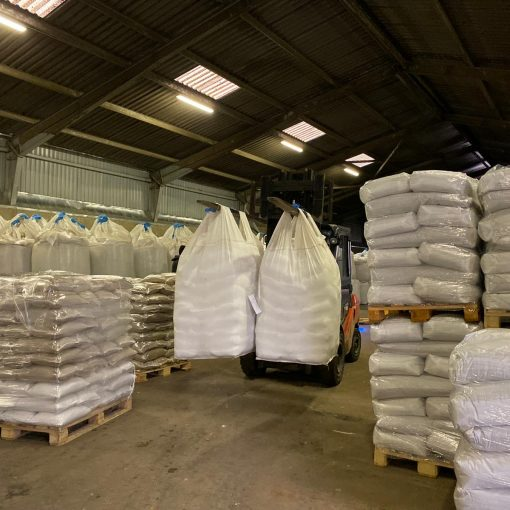 Seashells in bulk and retail for laying hens