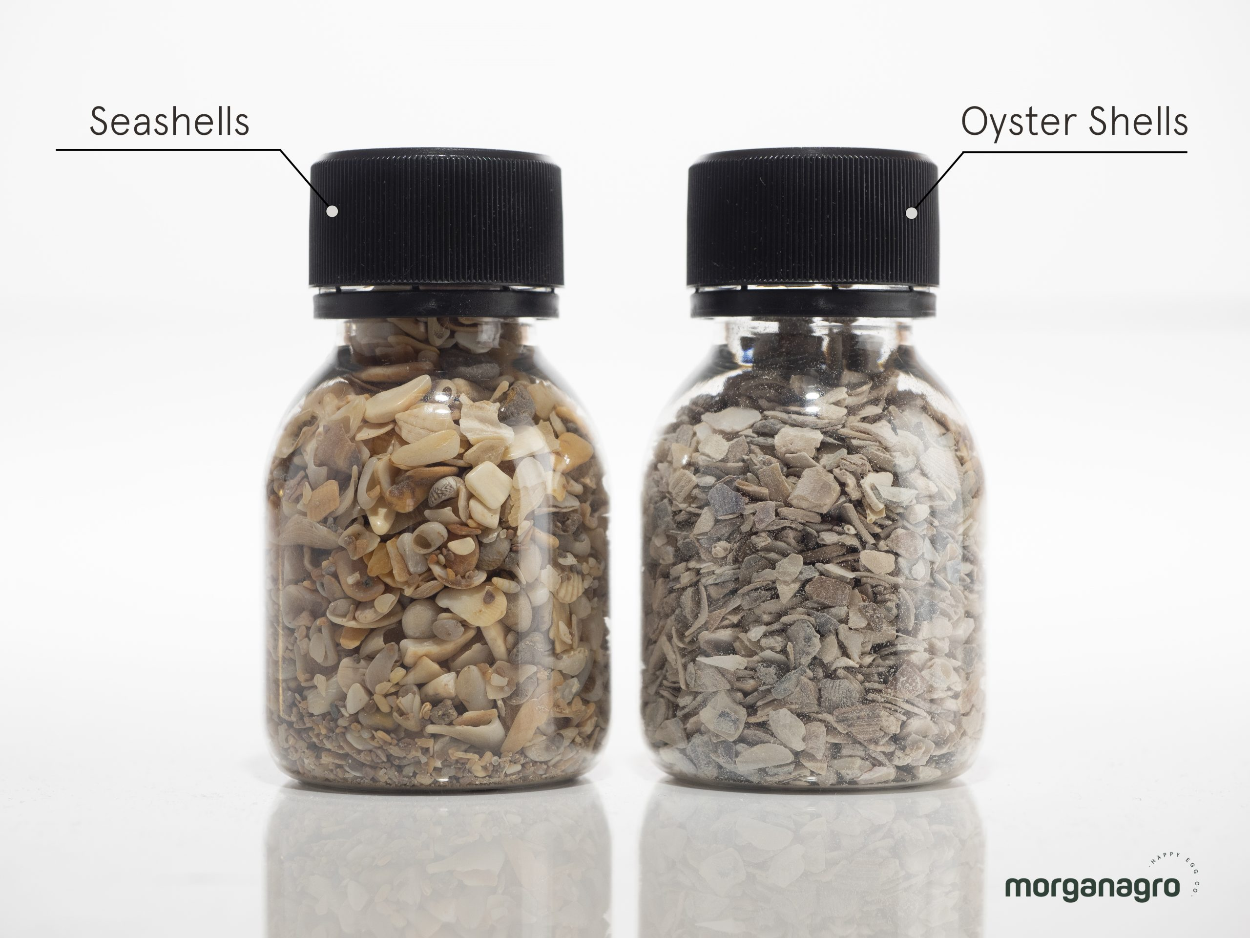 BUT WHY OYSTER SHELLS?